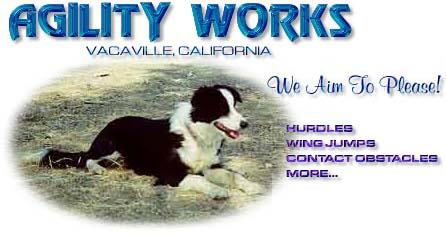 Agility Works Hurdles and More